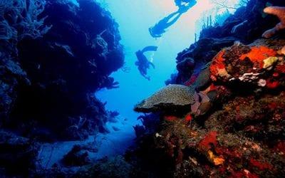 Séminaire de plongée